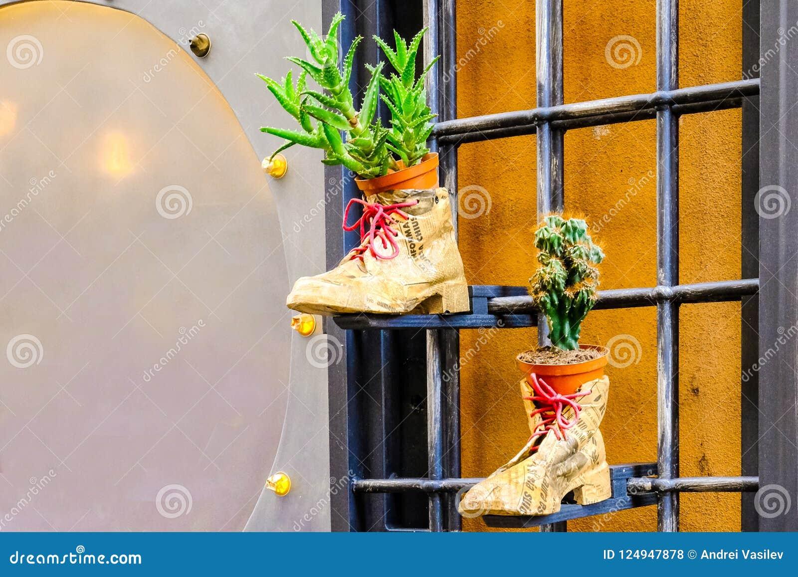 Bloempotten in schoenen in een oude krant worden verpakt die op een rooster hangen dat
