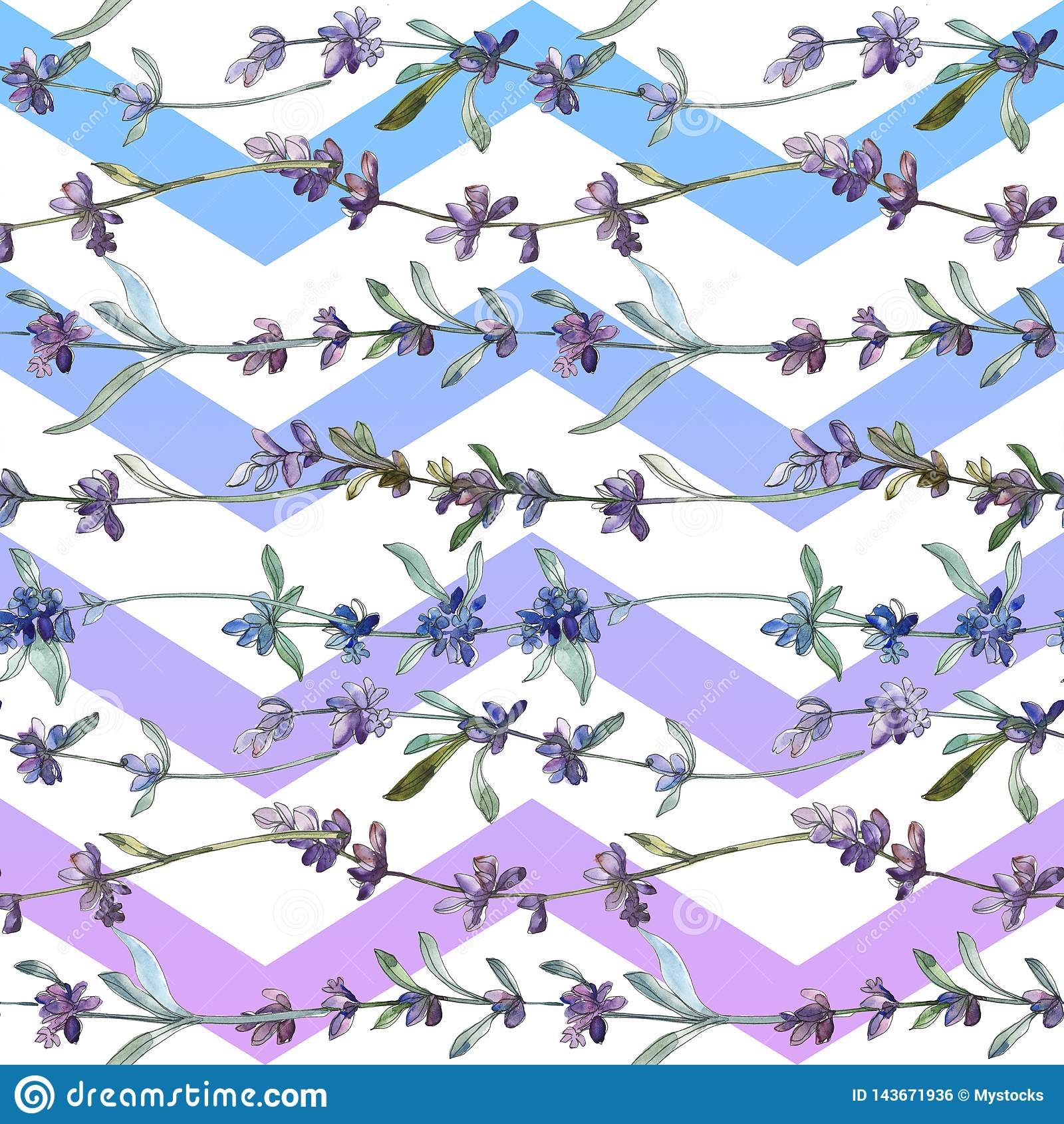 Blom- botanisk blomma f?r purpurf?rgad lavendel Upps?ttning f?r vattenf?rgbakgrundsillustration Seamless bakgrund m?nstrar
