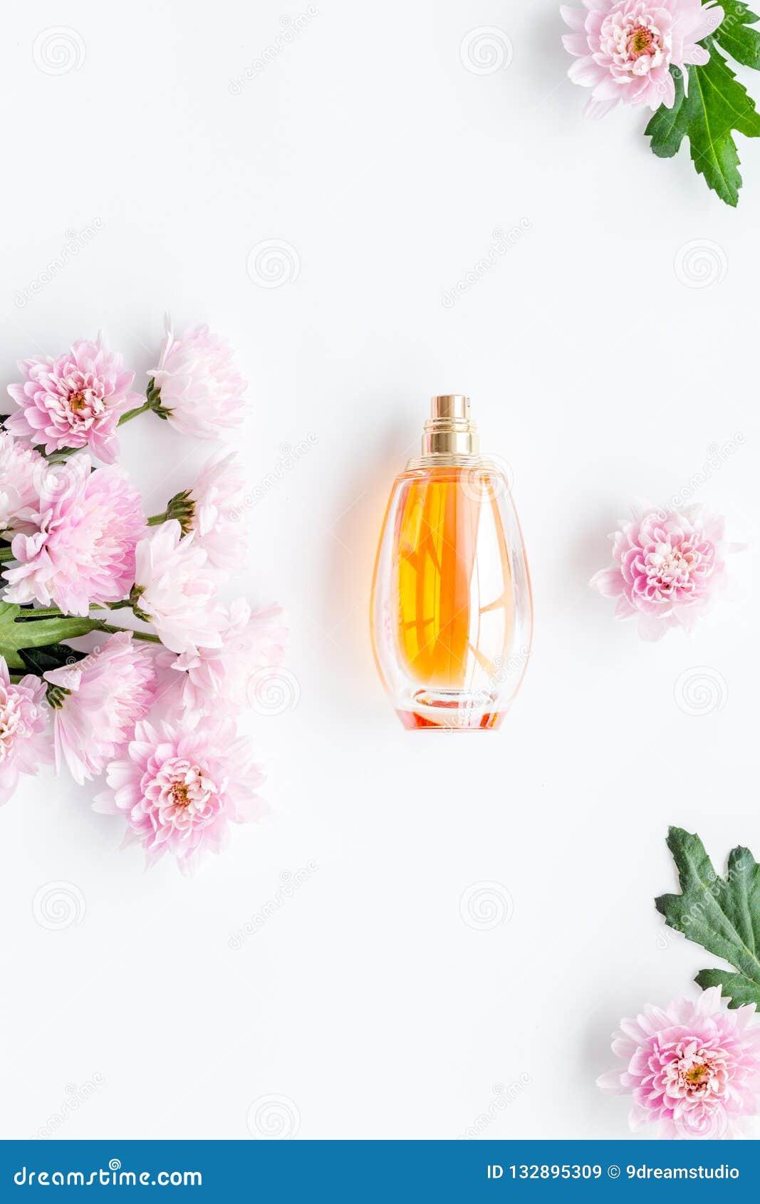 Blom- doft för kvinnor Flaska av doft nära delikata rosa blommor på den vita gränsen för utrymme för kopia för bästa sikt för bak