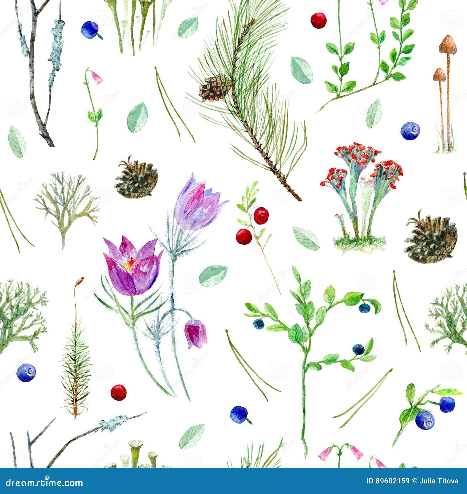 Blom- sömlös modell för pinjeskog