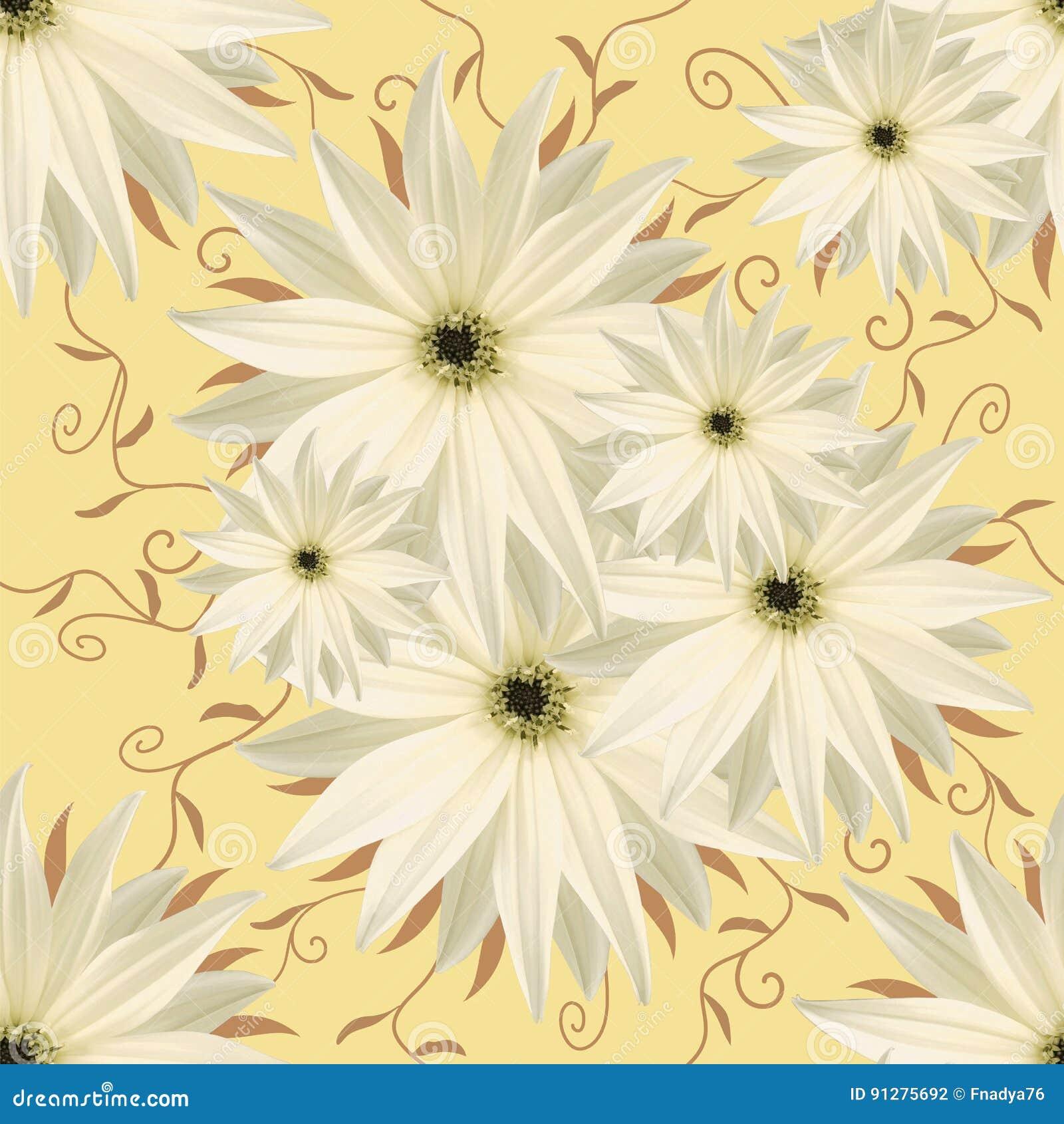 Blom- sömlös oändlig bakgrund Vit-yelliwblommor för design och printing Bakgrund av naturliga blommor
