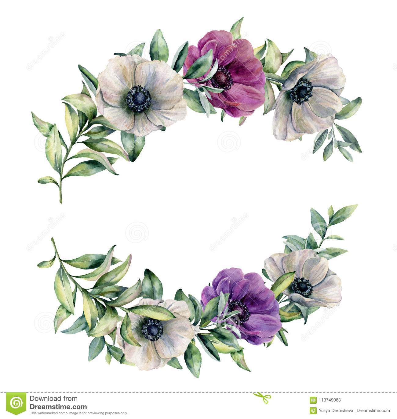 Blom- sammansättning för vattenfärg med den färgrika anemonen Räcka den målade vit, violeten, rosa färgblommor och sidor som isol