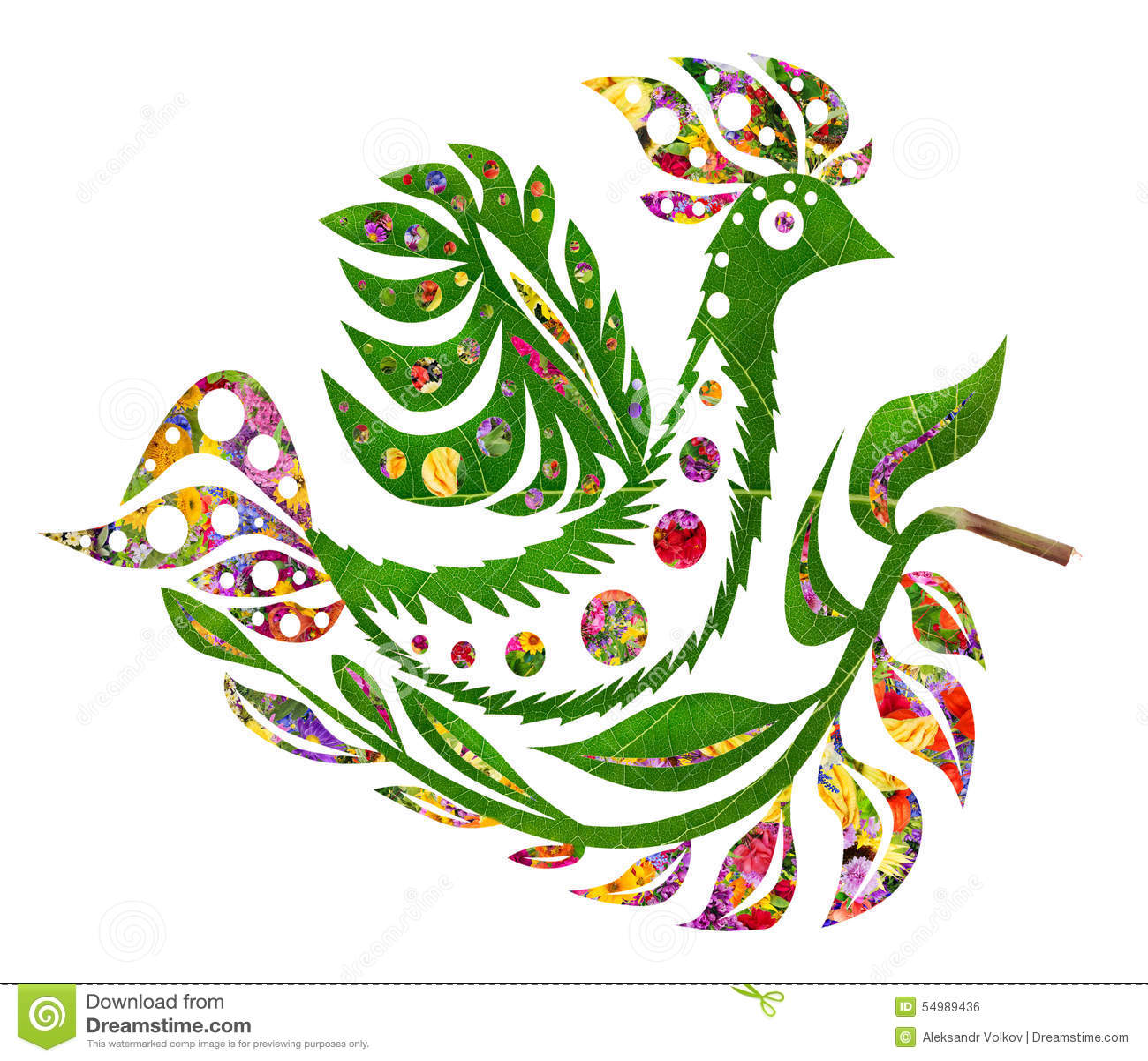 Blom- sommarfågel Phoenix