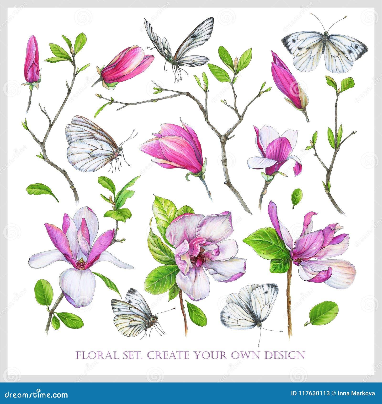 Blom- uppsättning med den rosa magnolian, ris med sidor och vitfjärilar