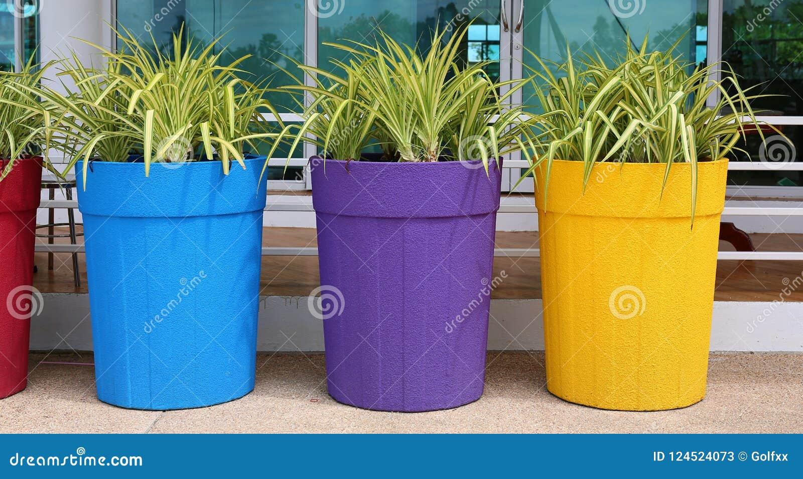 Blomma i den stora färgrika krukan, trädgårds- garnering