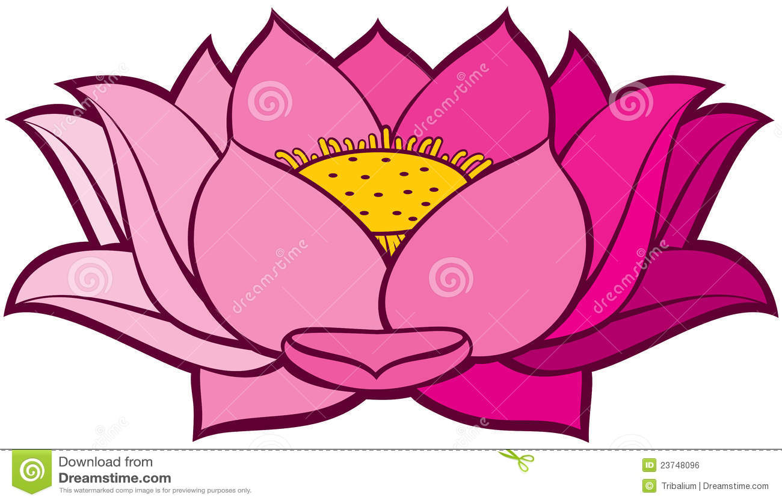 lotusblomma tecknad