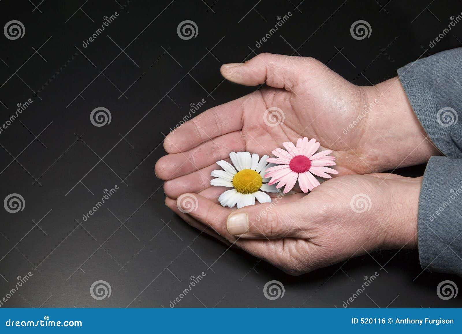 Blommahand