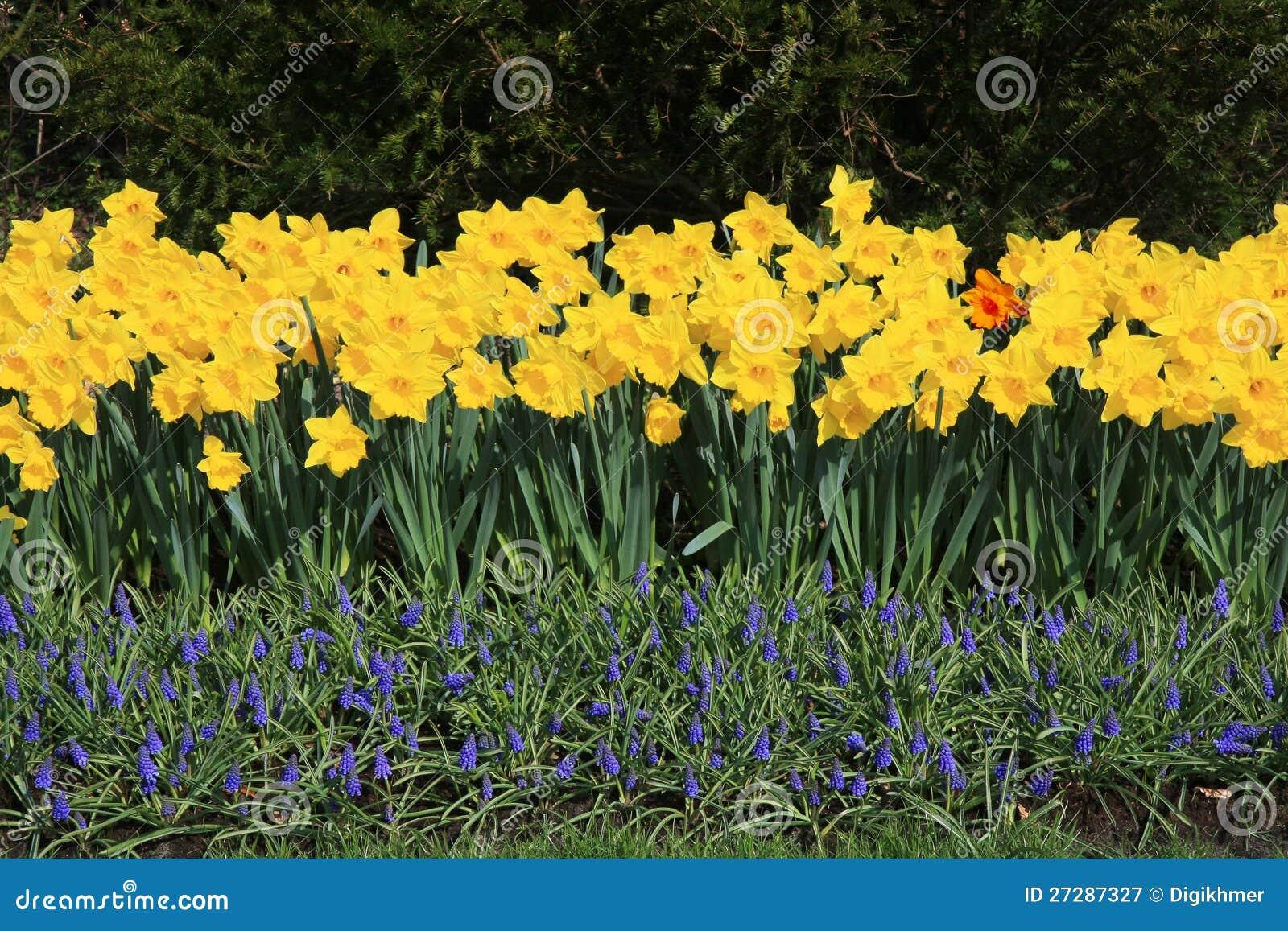 Blommastaket