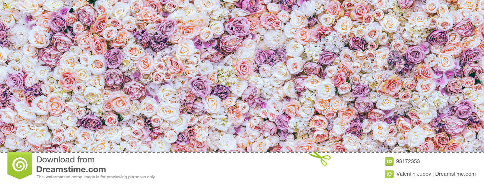 Blommaväggbakgrund med att förbluffa röda och vita rosor som gifta sig garnering, gjord hand -