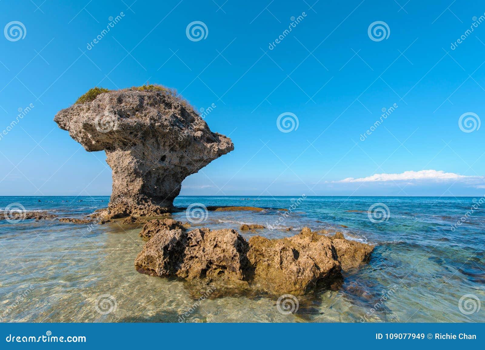 Blommavas Coral Rock på den Lamay ön i Taiwan