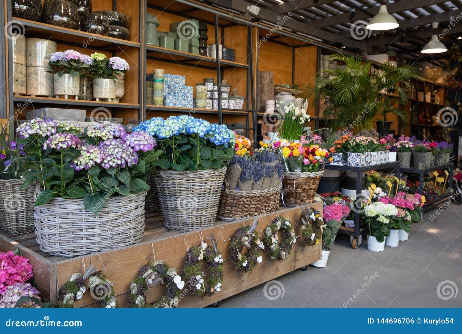 Blommor bommar för med variation av nya härliga blommor liksom vanlig hortensiamacrophyllaen, lavendel, persiska smörblommor och