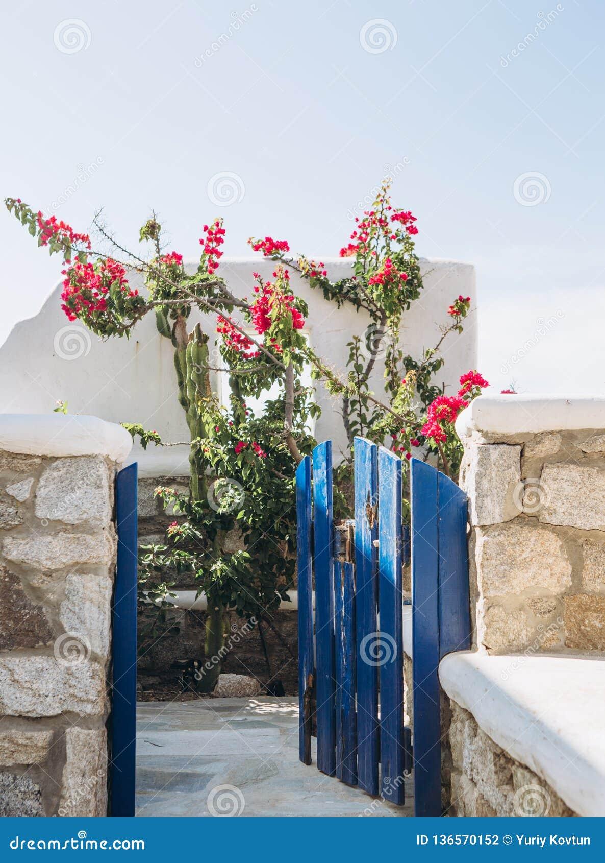 Blommor för trädgård för balkong för stenhushav rosa