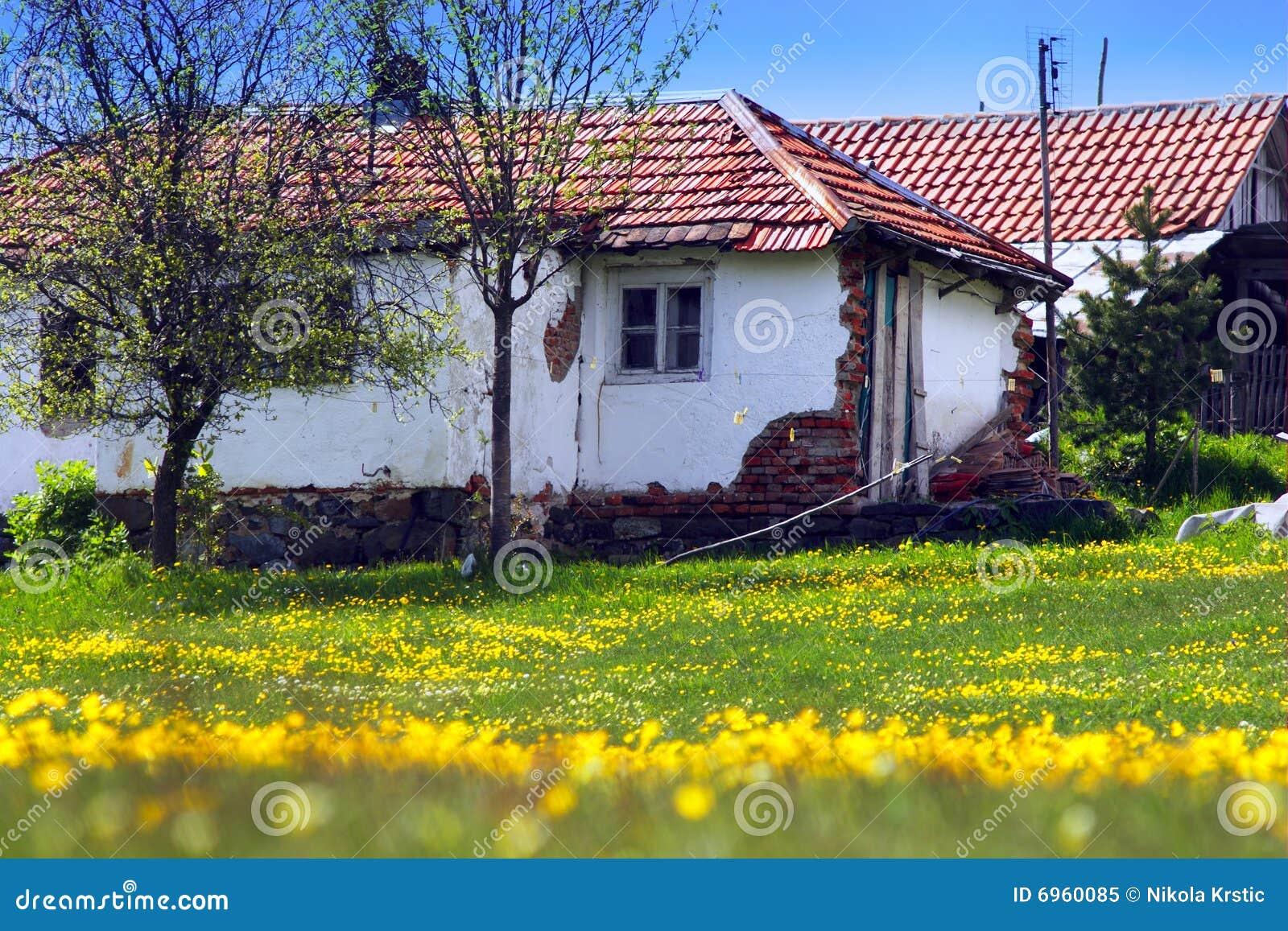 Blommor house gammalt