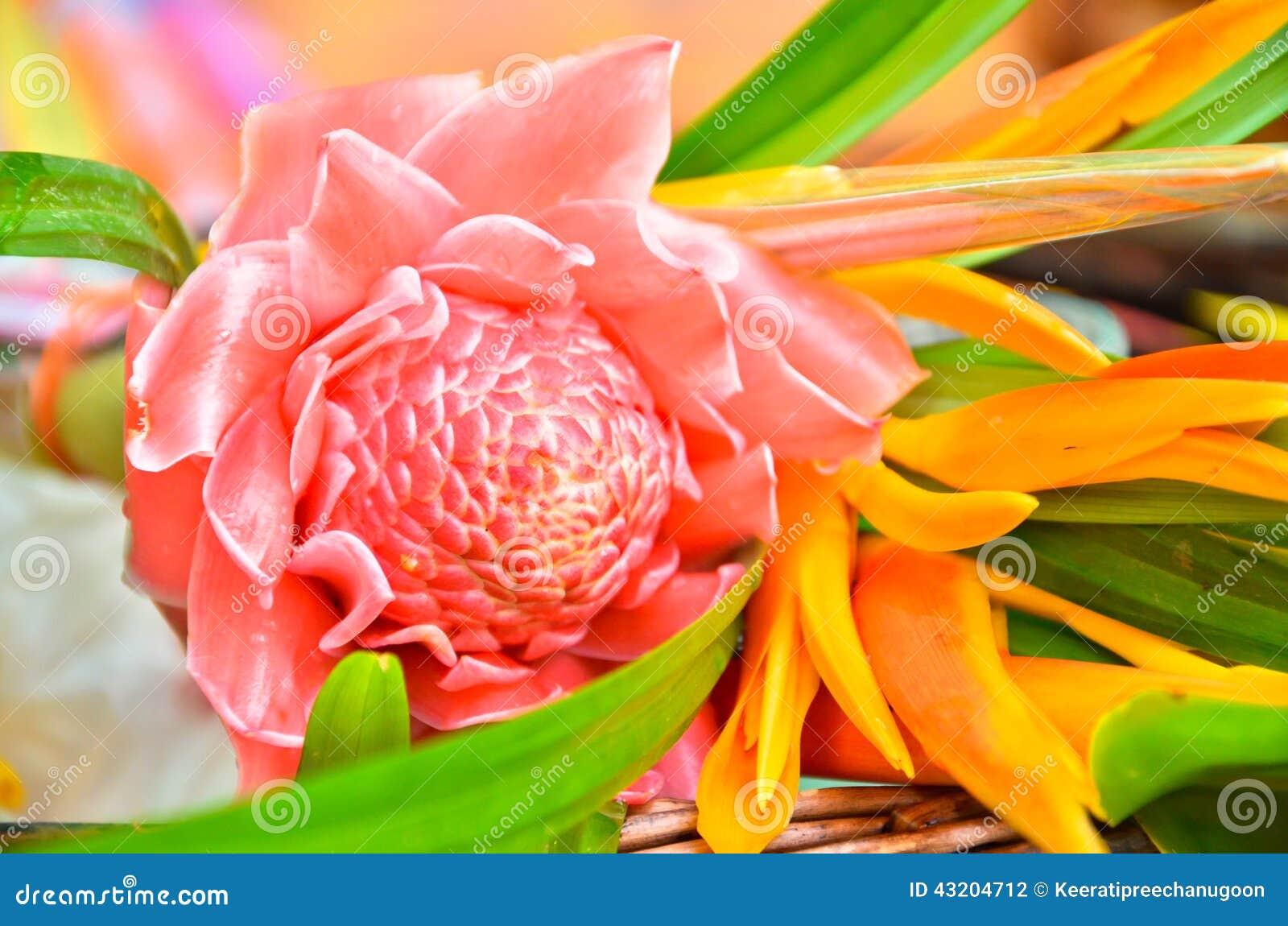 Download Blommor Till Den Buddistiska Munken Arkivfoto - Bild av välgörenhet, folk: 43204712