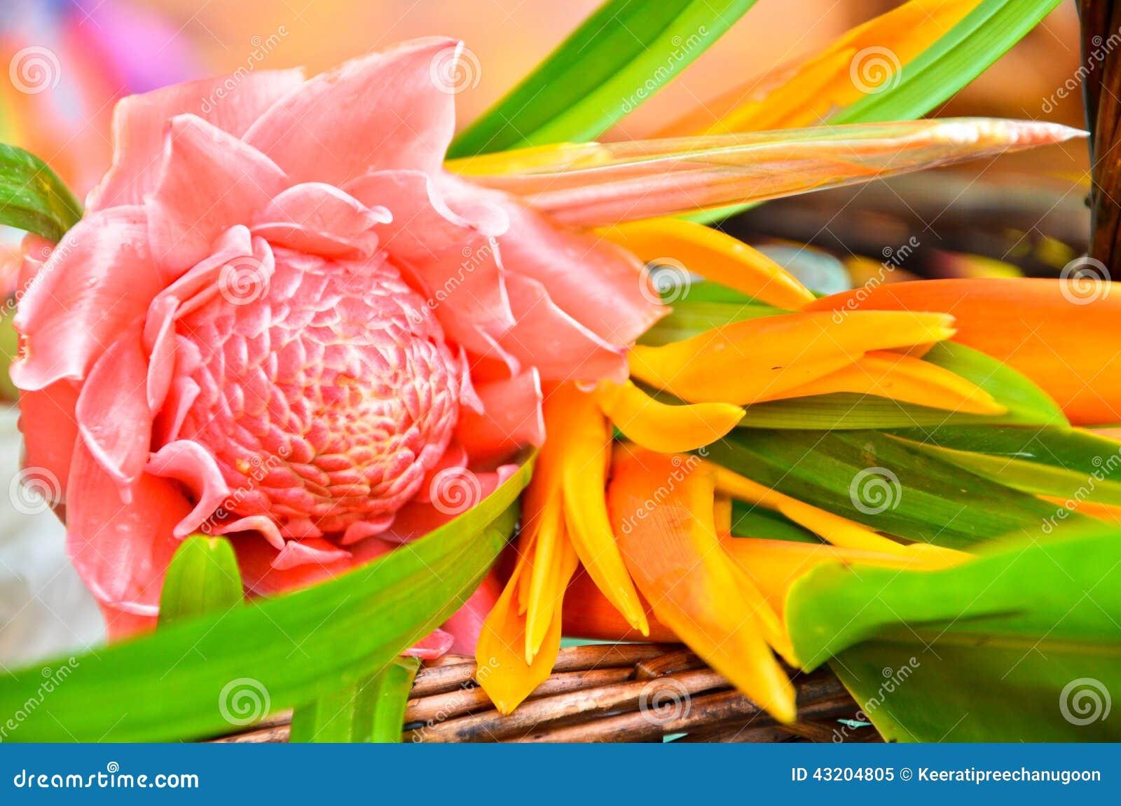 Download Blommor Till Den Buddistiska Munken Fotografering för Bildbyråer - Bild av blommor, ceremoni: 43204805