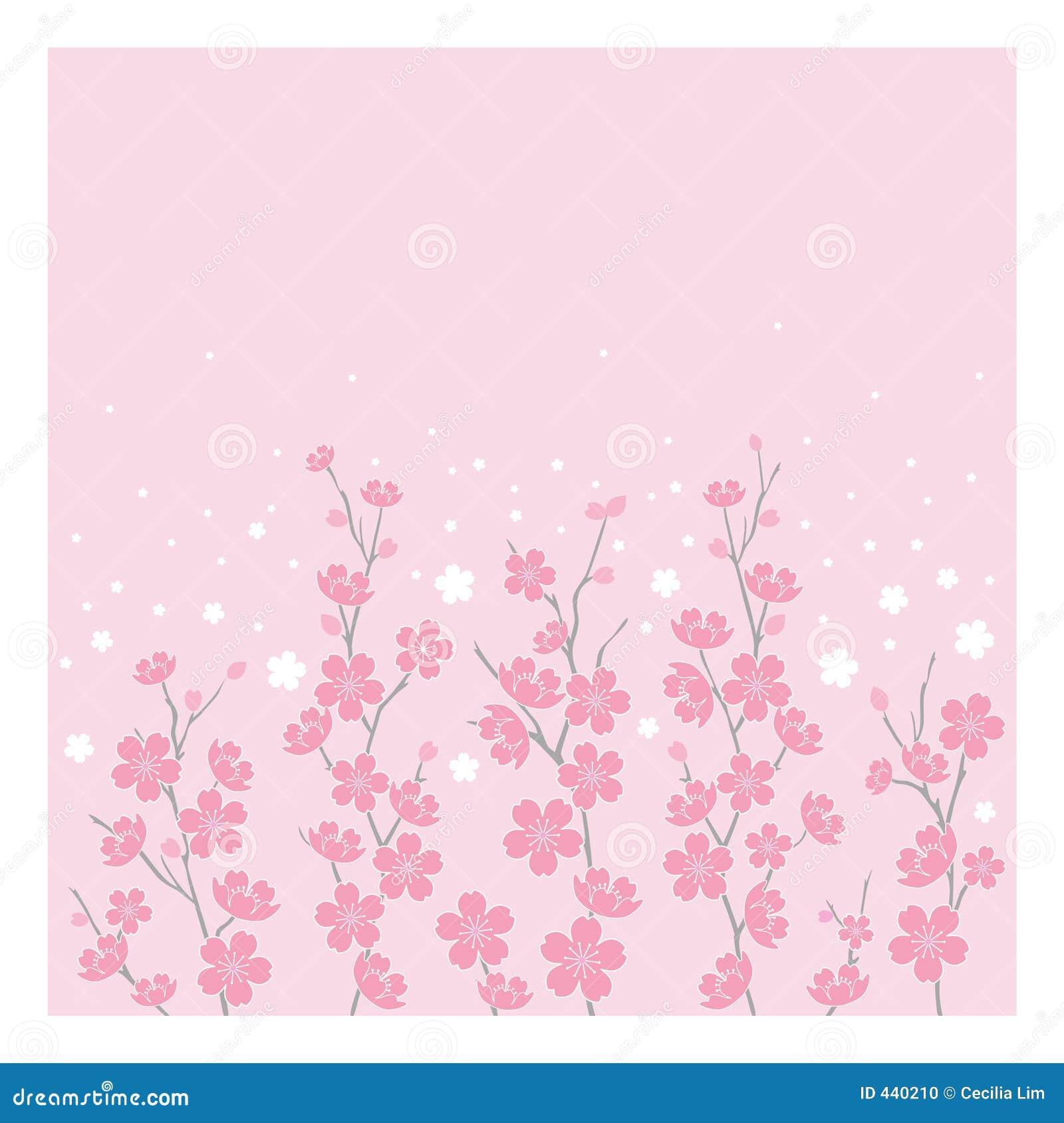 Blomstrar det horisontalCherryet