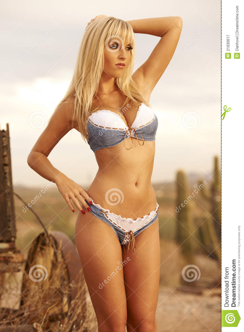 Blond Beauty In Western Scene Royalty Free Stock Photography - Image ...Western Desert Clipart
