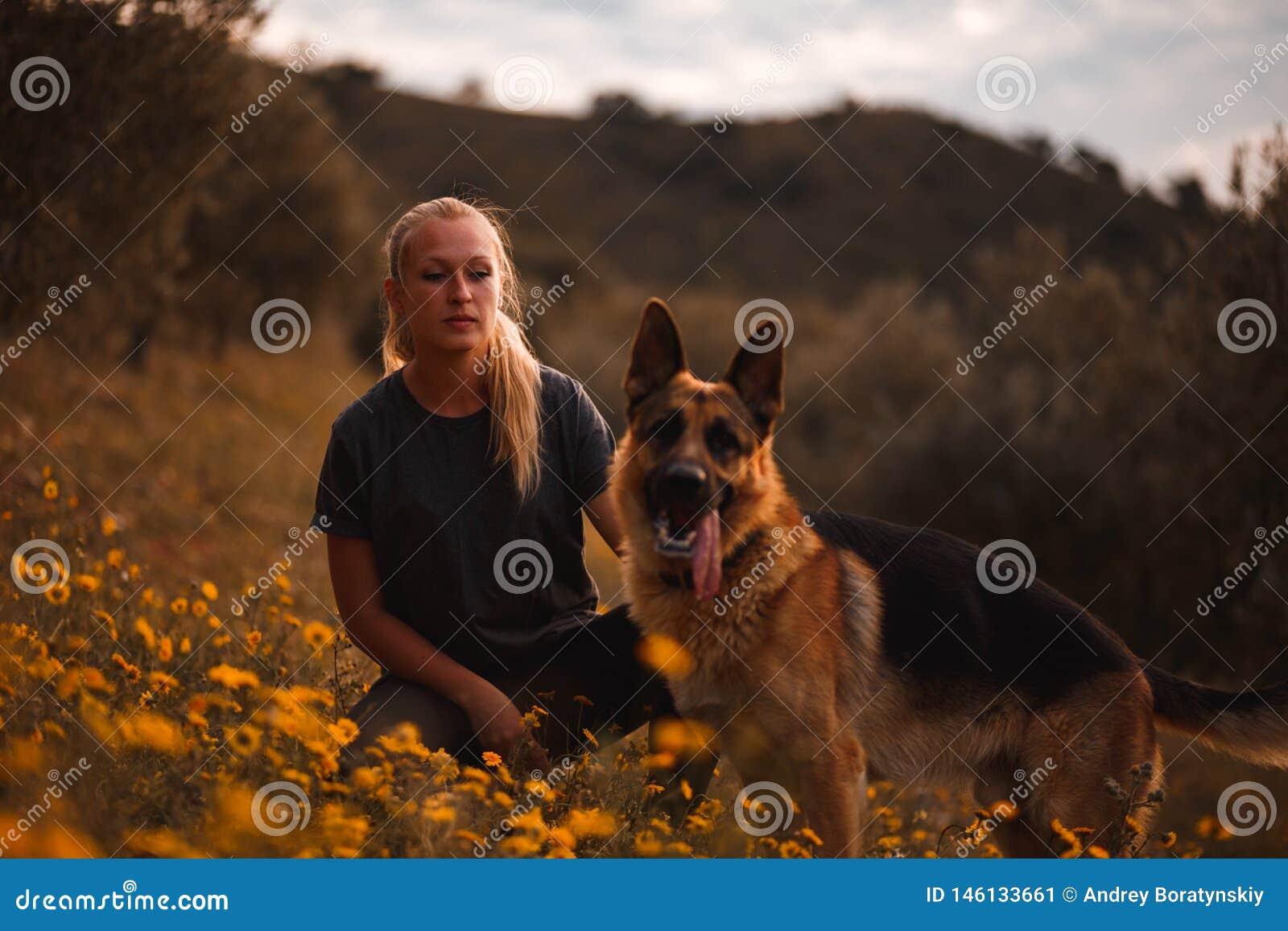Blond flicka som spelar med hunden f?r tysk herde i ett f?lt av gula blommor