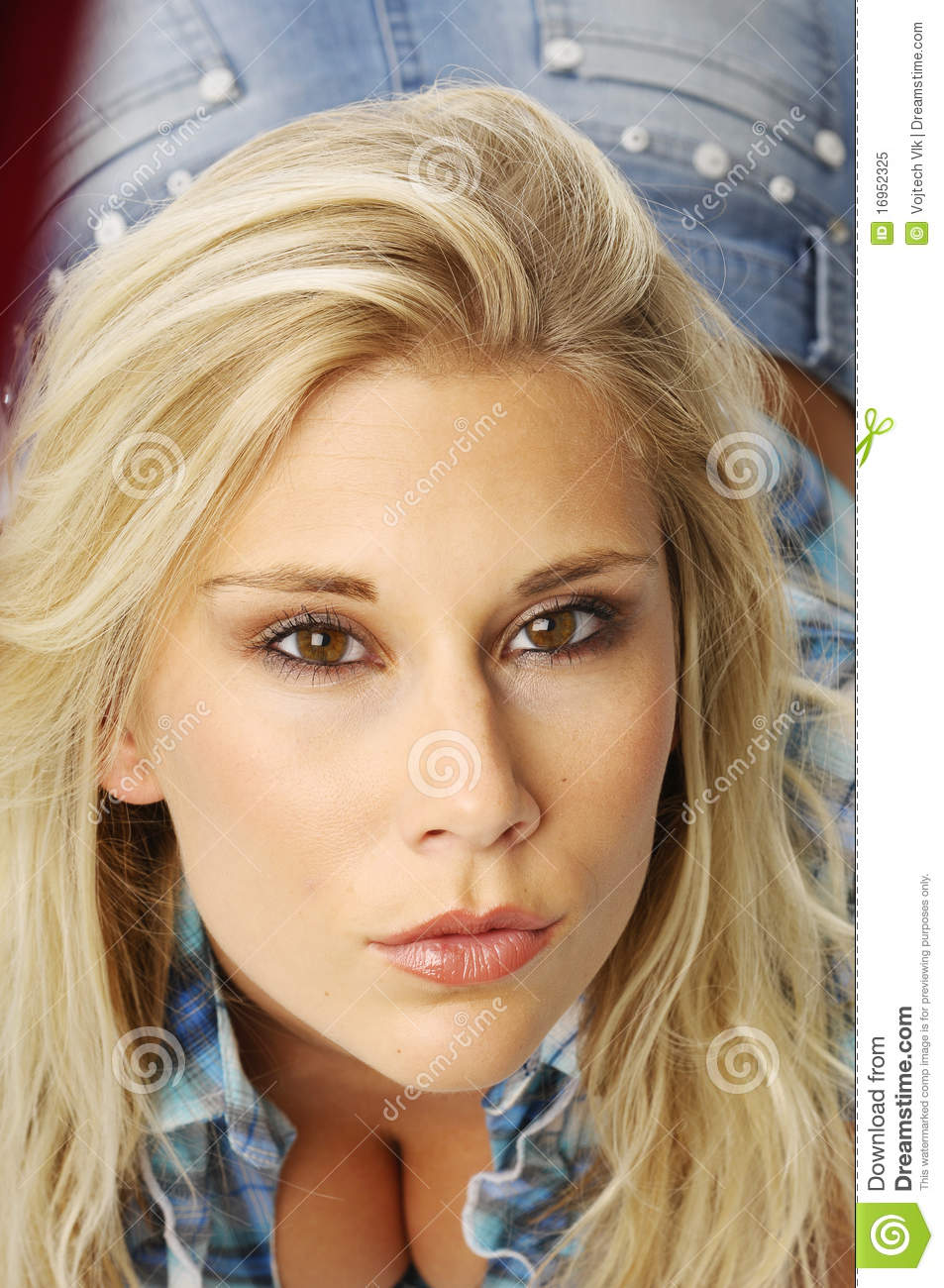 Blond Woman In Blouse Stock Image Image Of Slender Blonde 16952325