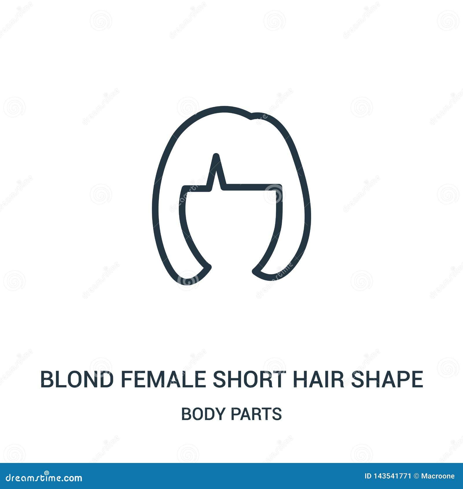 Blonde vrouwelijke korte het pictogramvector van de haarvorm van lichaamsdeleninzameling Dunne van het de vormoverzicht van het l