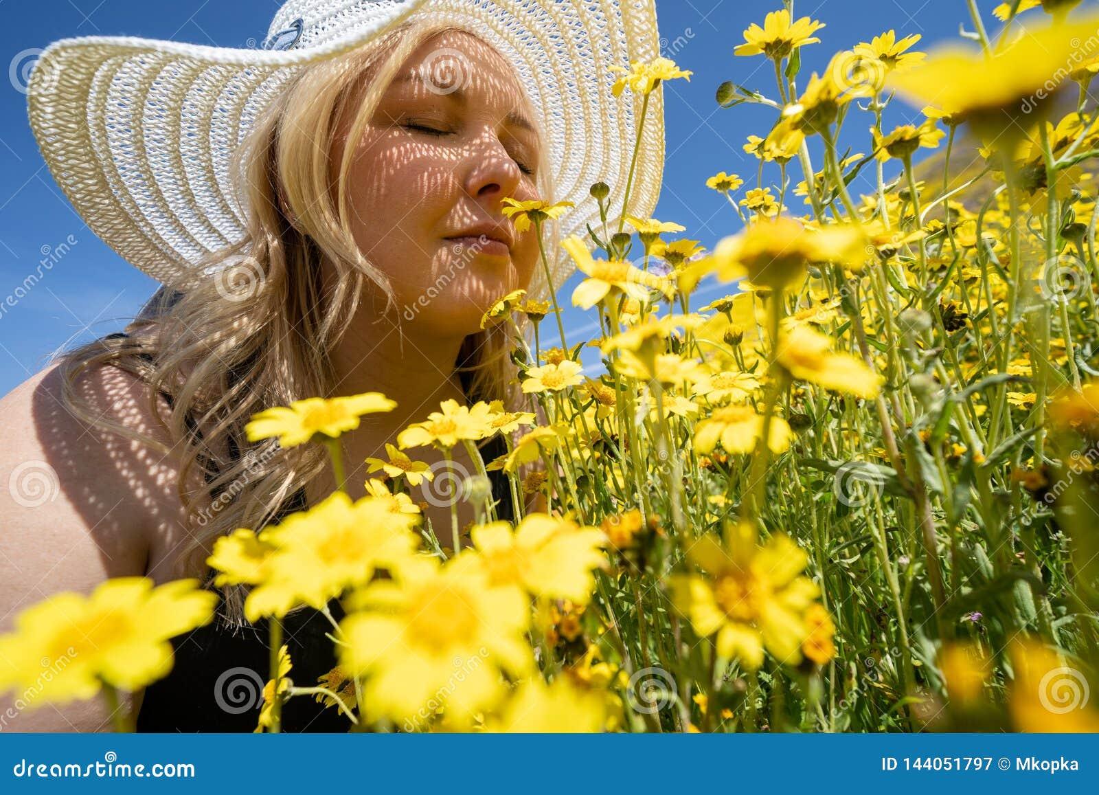 Blondevrouw die stro witte hoed draagt die een gebied van gele wildflowers ruikt Concept voor de hulp van de de lenteallergie