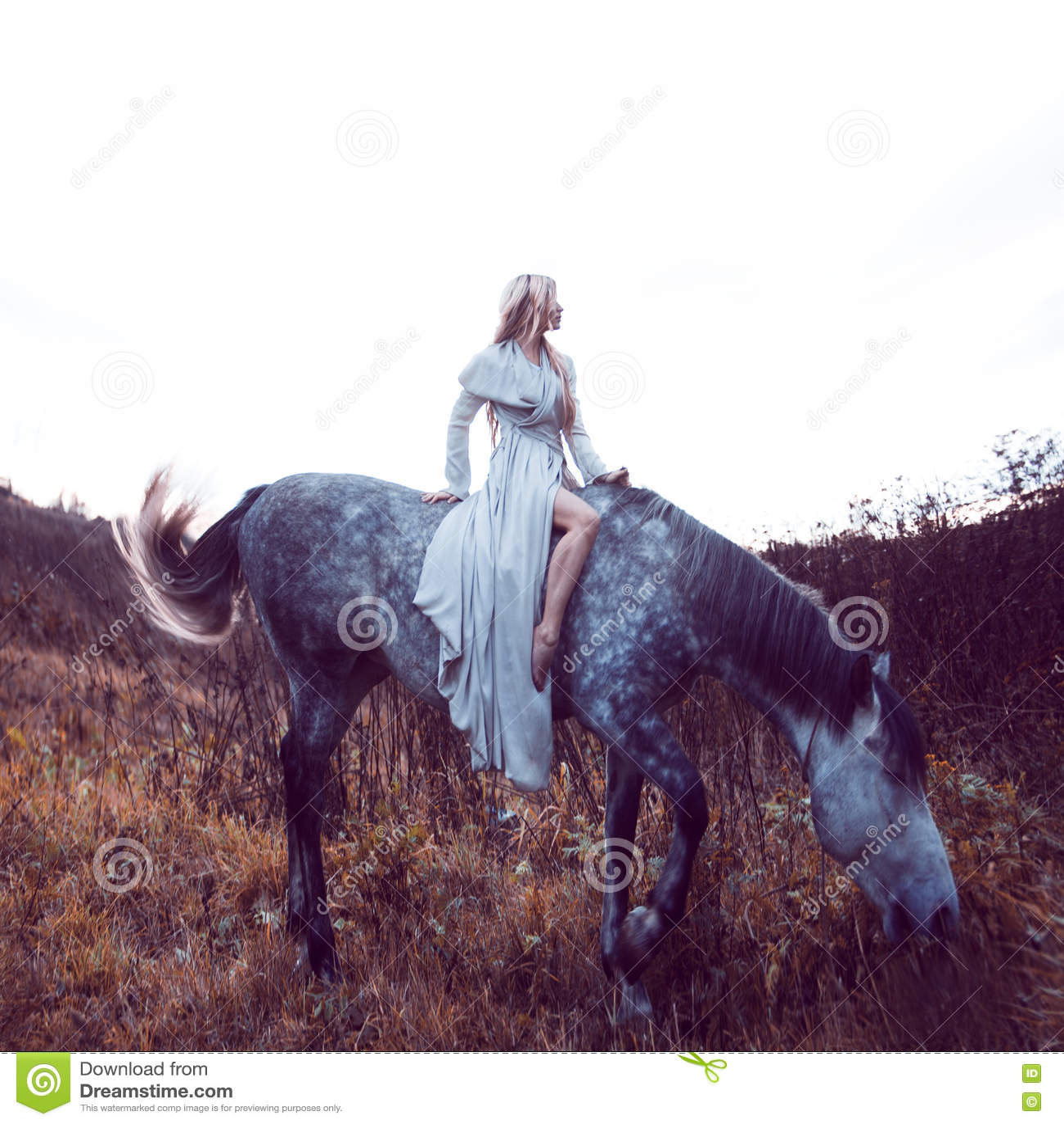 Blondie красоты с лошадью в поле, влиянием тонизировать