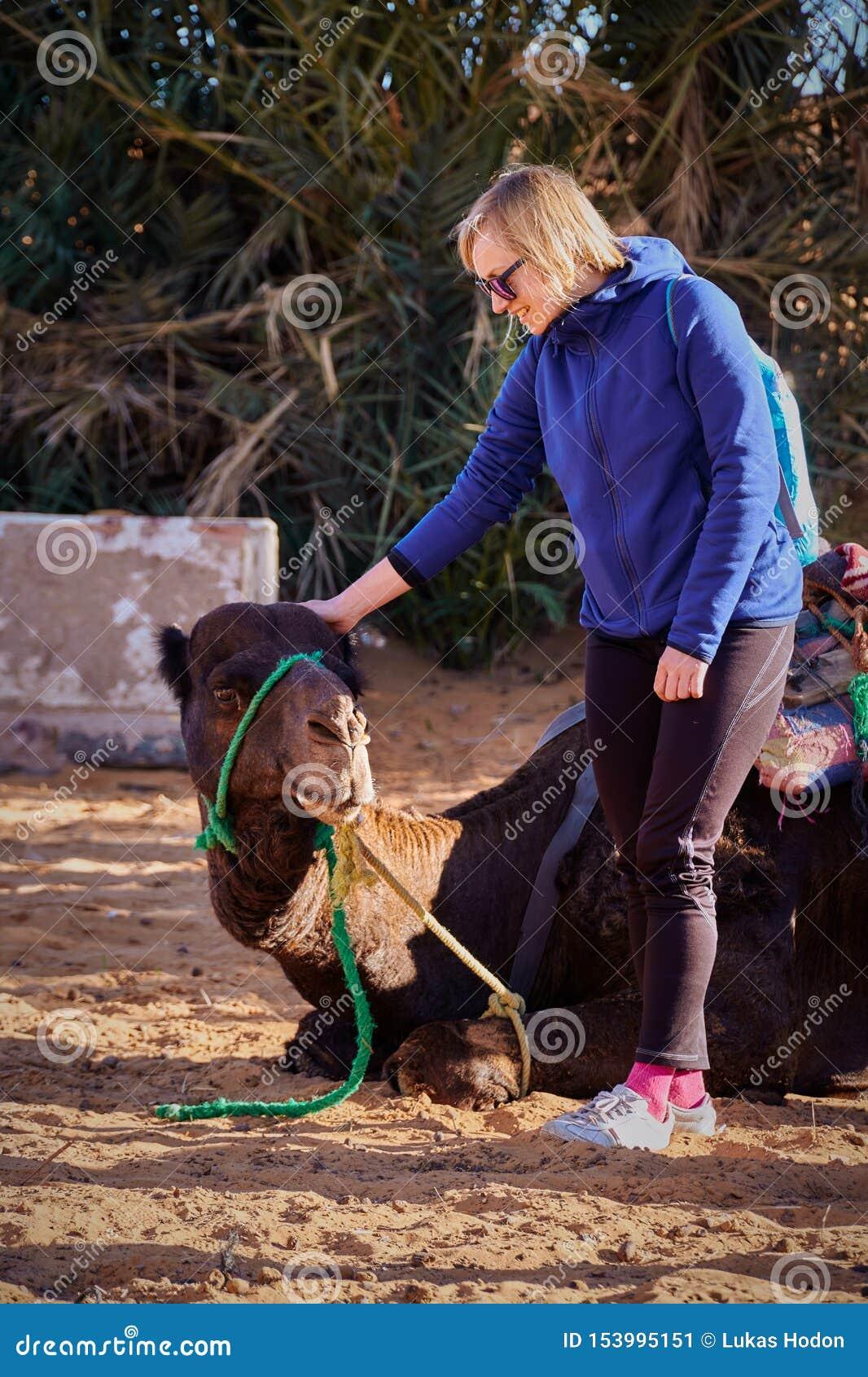 Blondynki dziewczyny turystyczny narządzanie dla wycieczki na wielbłądzie w pustynię