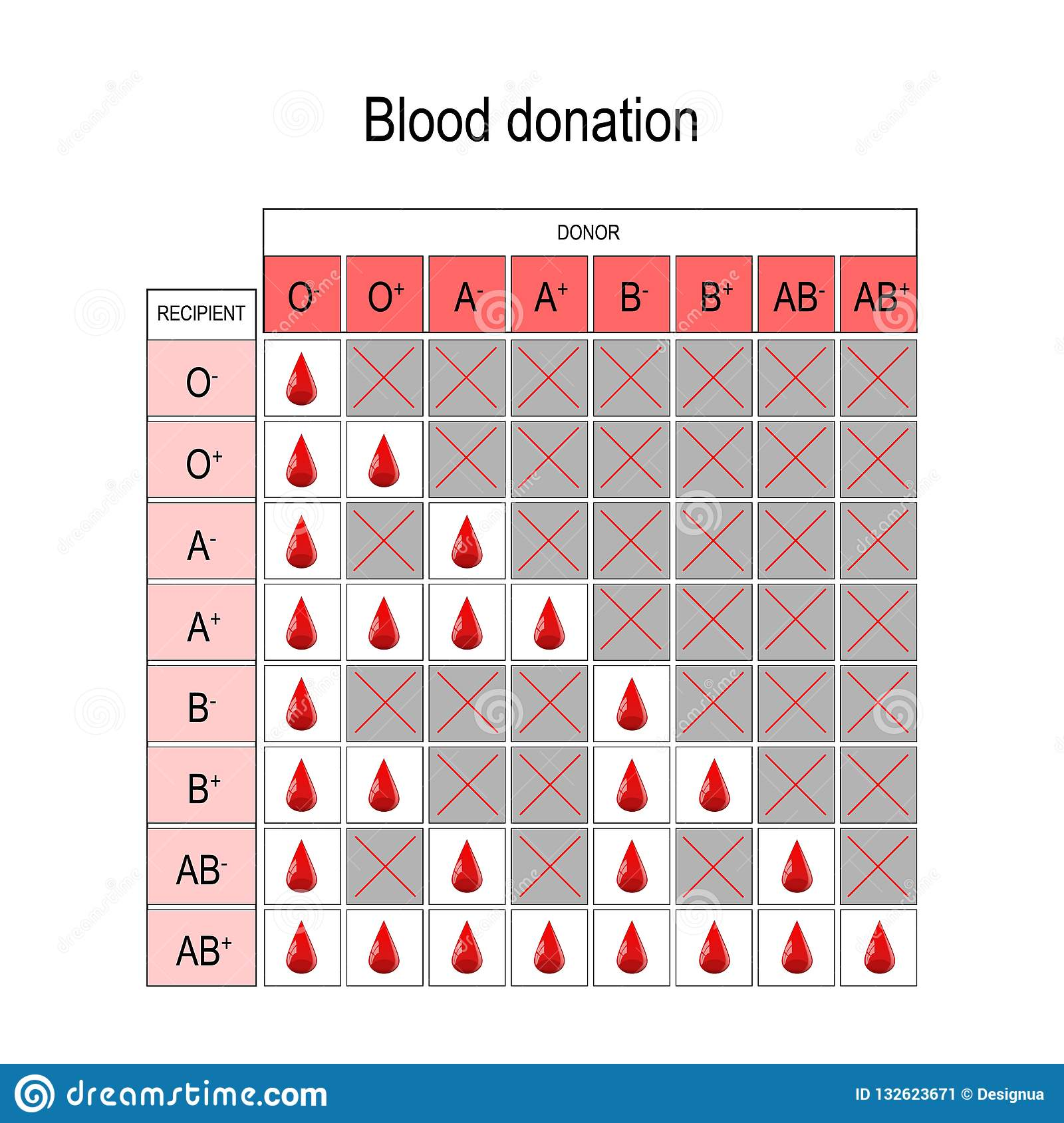 Blood Donation Chart Recipient And Donor Types Of A B AB O There Is Specific Compatibility Between Groups For Donating Receiving