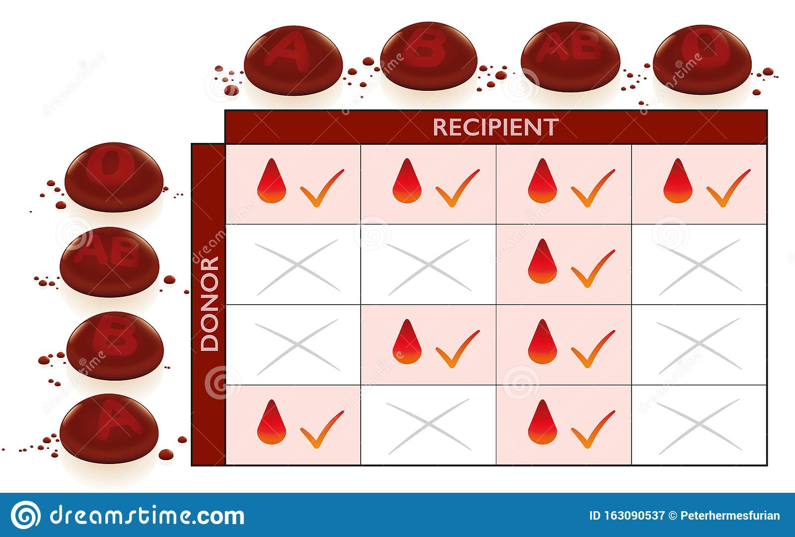 what is the universal blood recipient