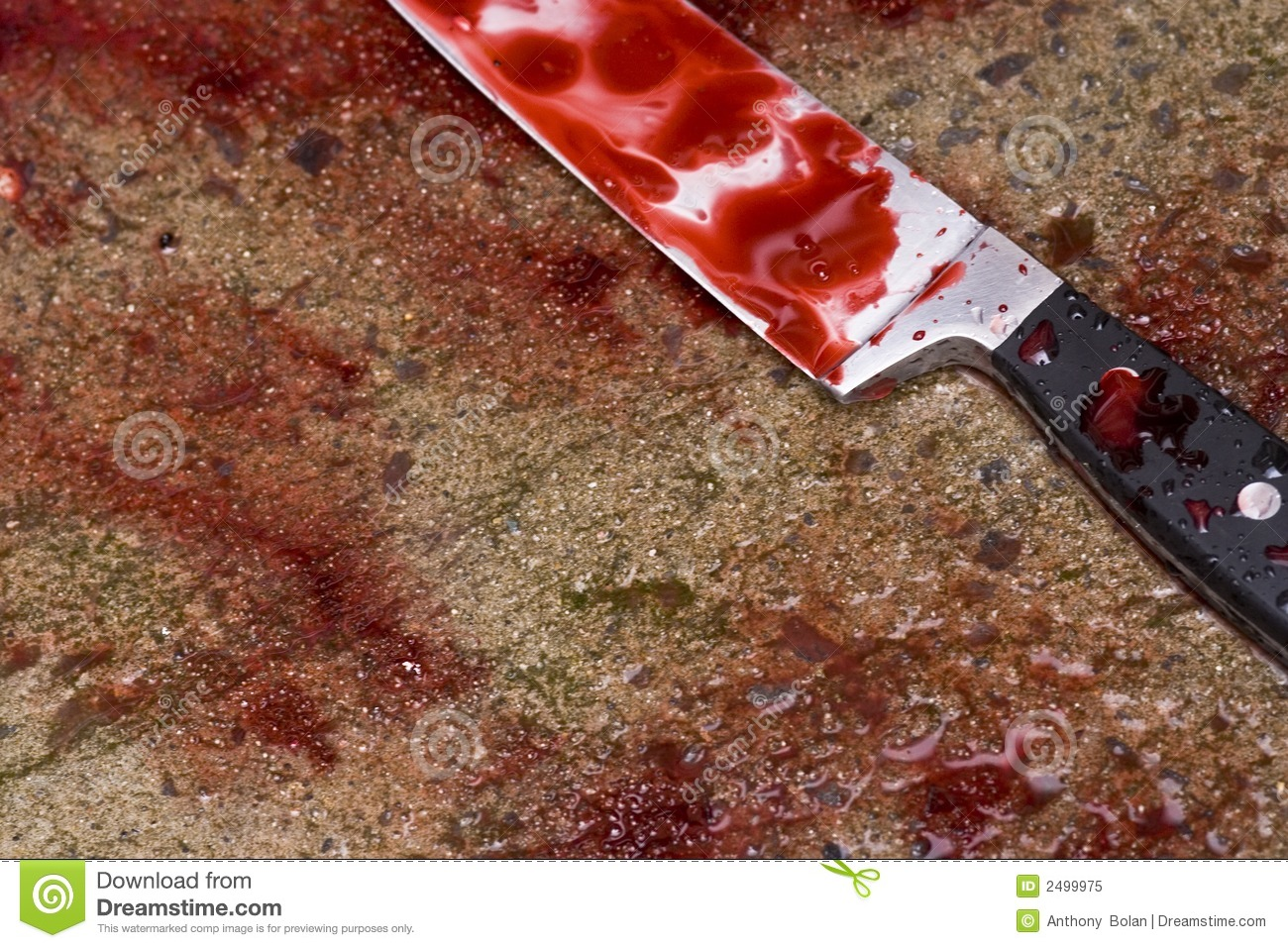 Blood Soaked Knife Royalty Free Stock Photo Image 2499975