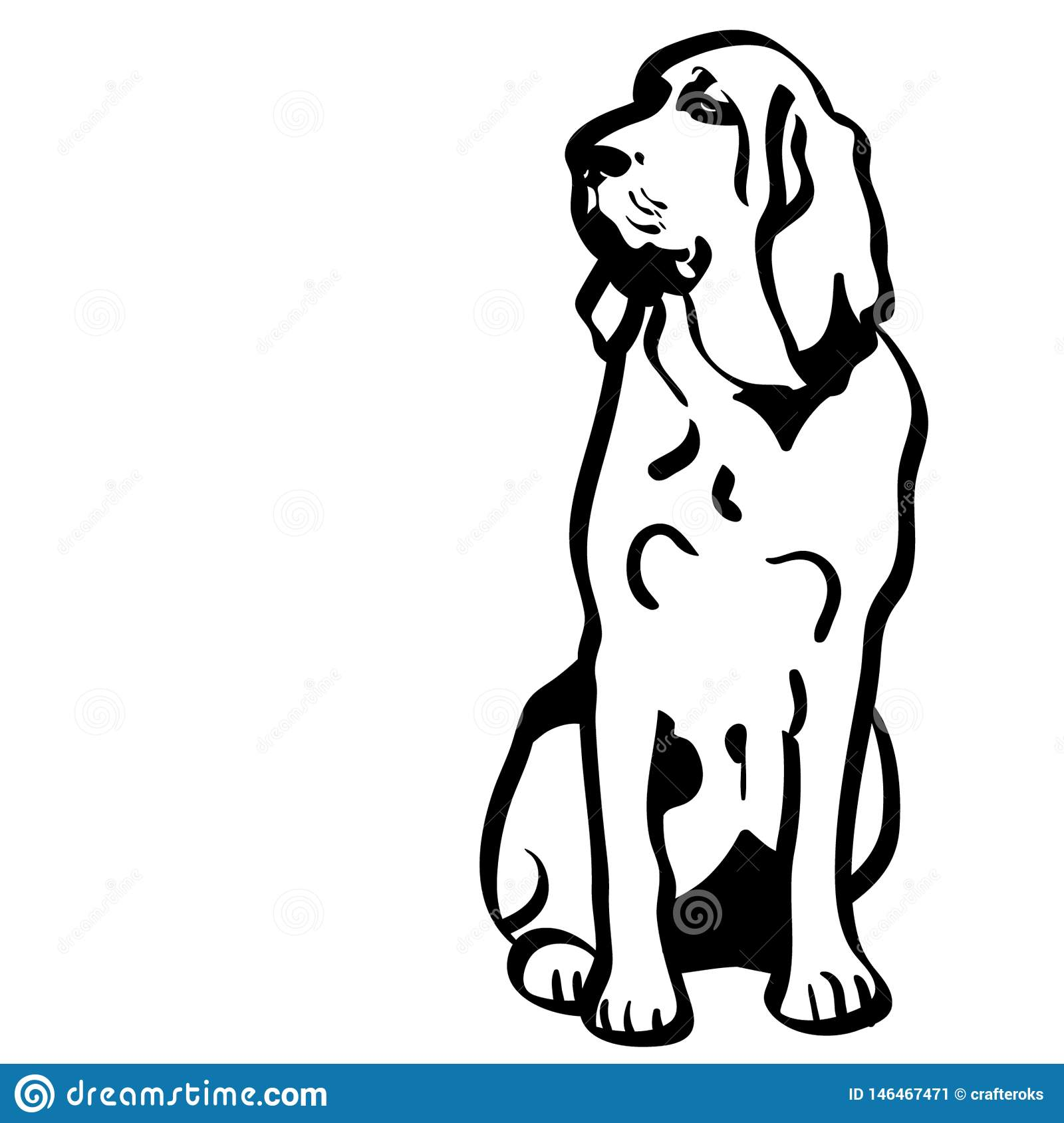 Bloodhound Dog Vector Eps Hand Drawn Crafteroks Svg Free
