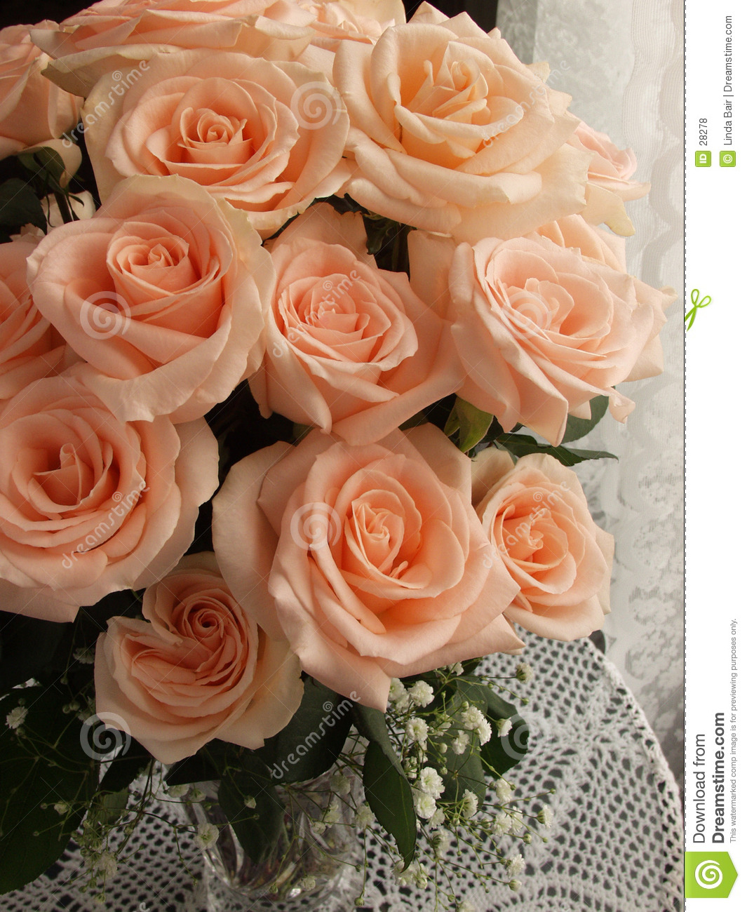 Blooming Bouquet Of Roses Stock Photo Image Of Peach Flowering 28278