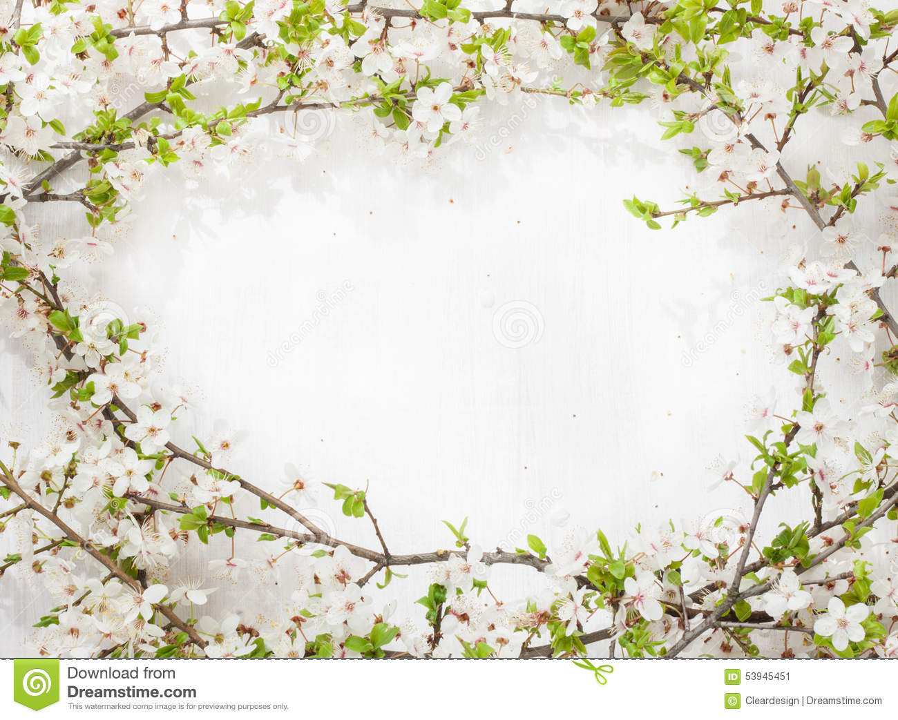 Blooming flowering tree branches as round frame on white - White painted tree branches ...