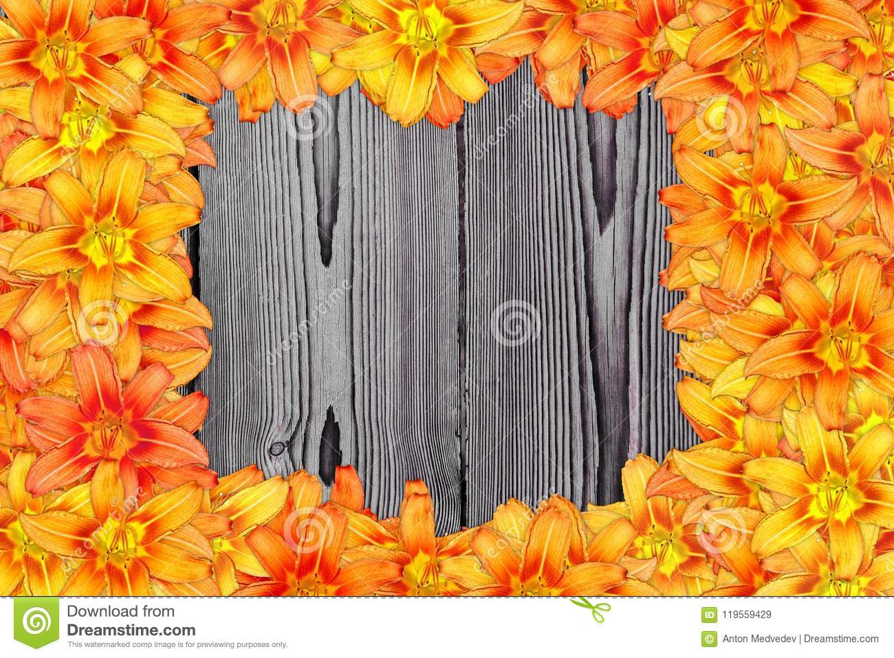 Many Blooming Orange Lily Flower On Red Wood Structure Background