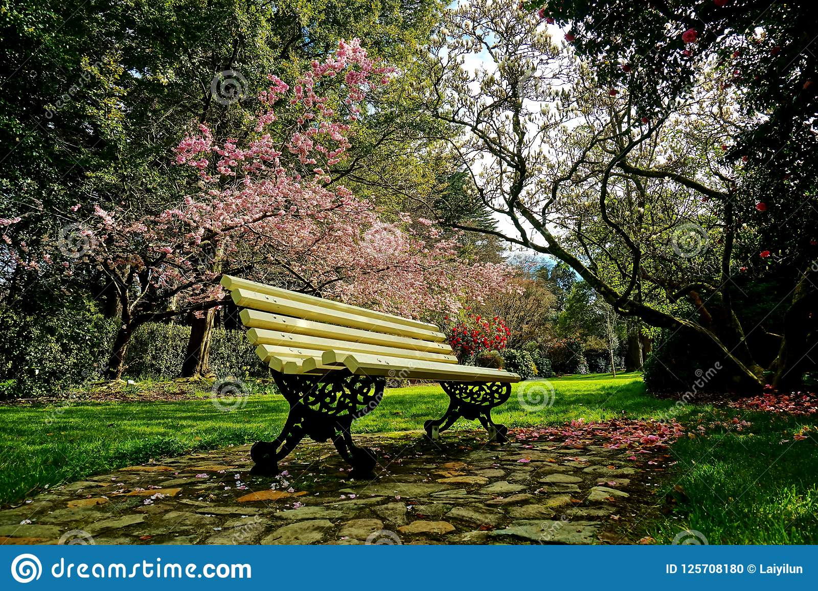Spring Is Coming In New Zealand Stock Photo Image Of Whole