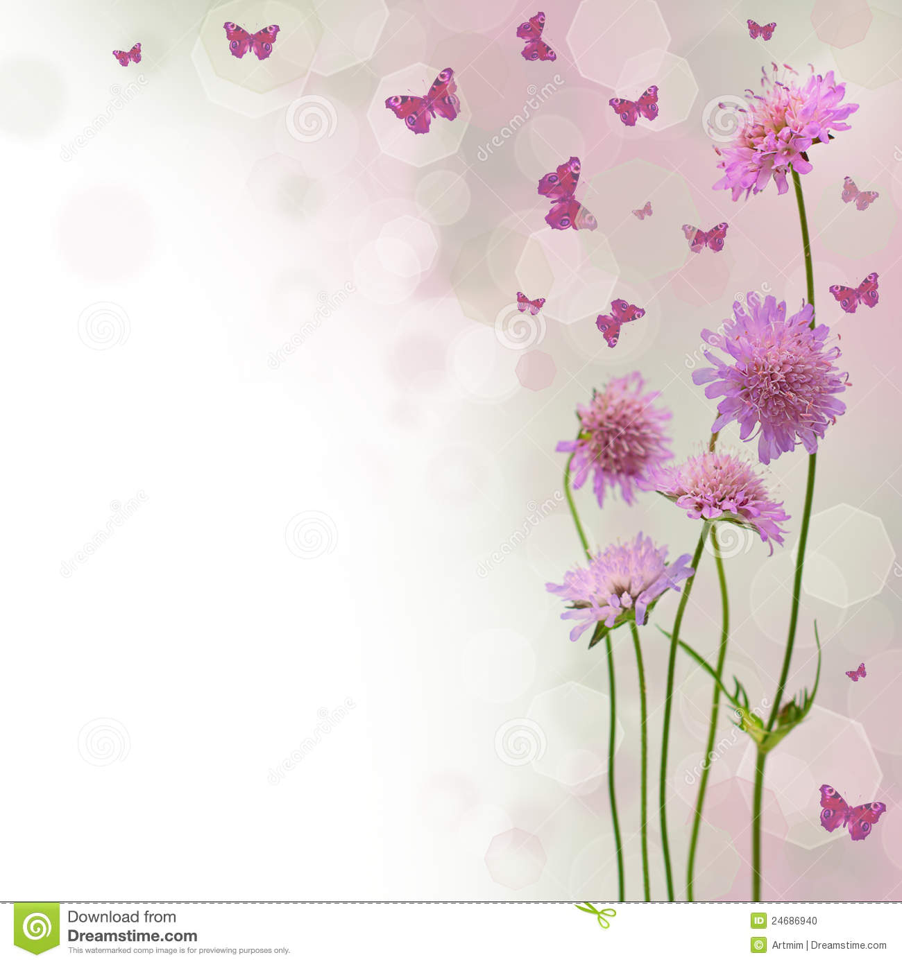 Blossom Background Floral Border Stock Photo Image