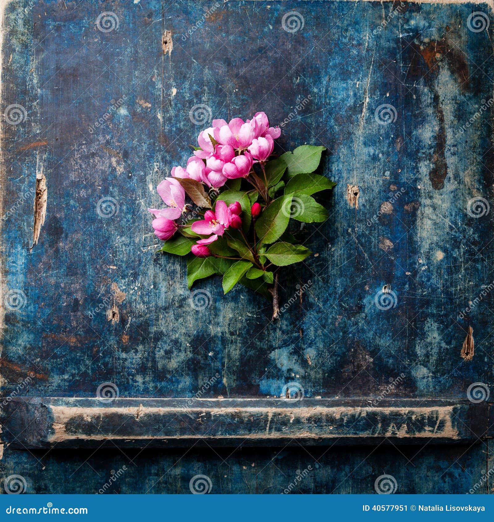 Blossoming ветвь розовой яблони