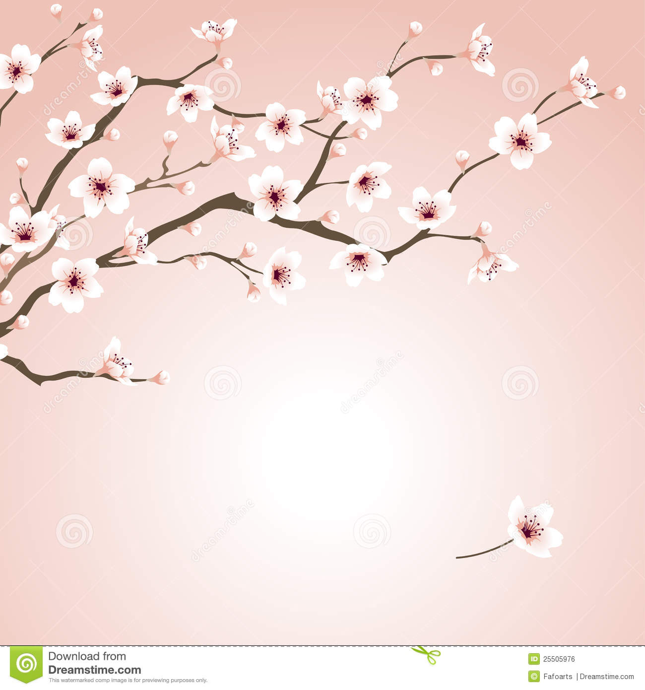 Nature background with blossoming sakura branch royalty free stock - Blossoming Cherry Tree Royalty Free Stock Image Image