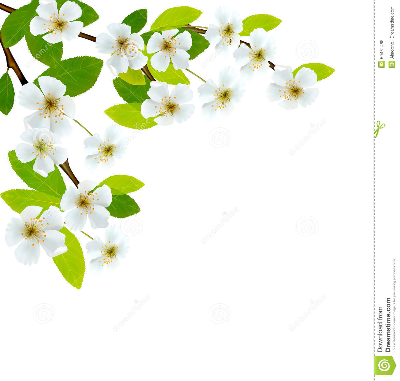 Blossoming tree brunch with spring flowers stock vector blossoming tree brunch with spring flowers mightylinksfo