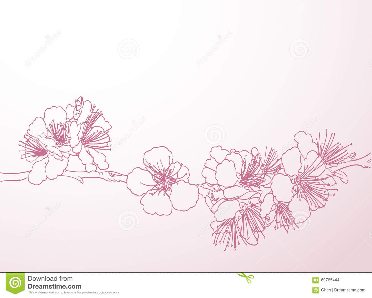 Line Drawing Spring Flowers : Beautiful blooming flowers hand drawing vector i