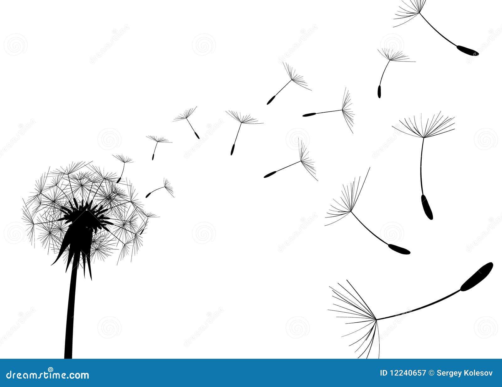 Blow Dandelion. Vector