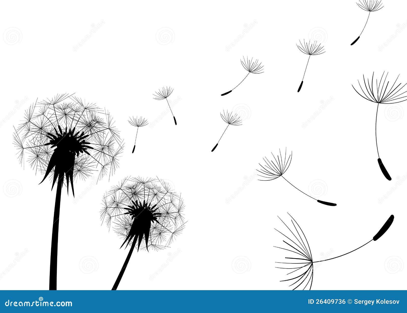 blow dandelion vector stock vector illustration of flower 26409736. Black Bedroom Furniture Sets. Home Design Ideas