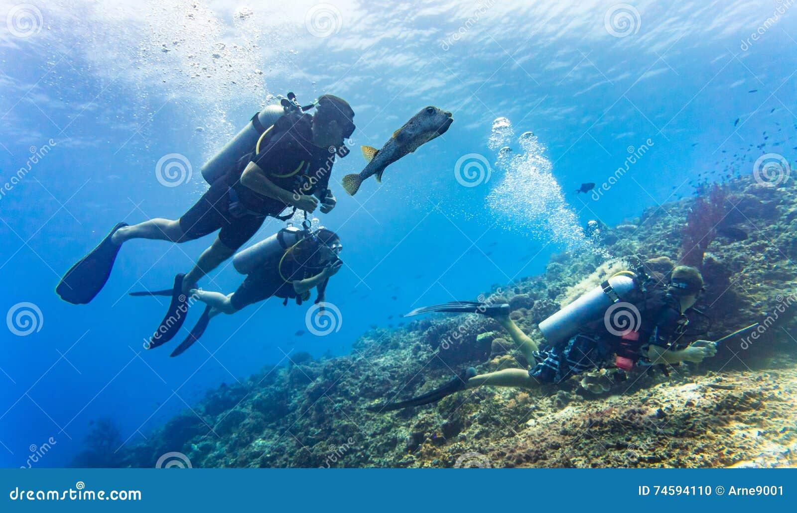 Blowfish begeleidt groep toeristenvrij duiken bij koraal ree