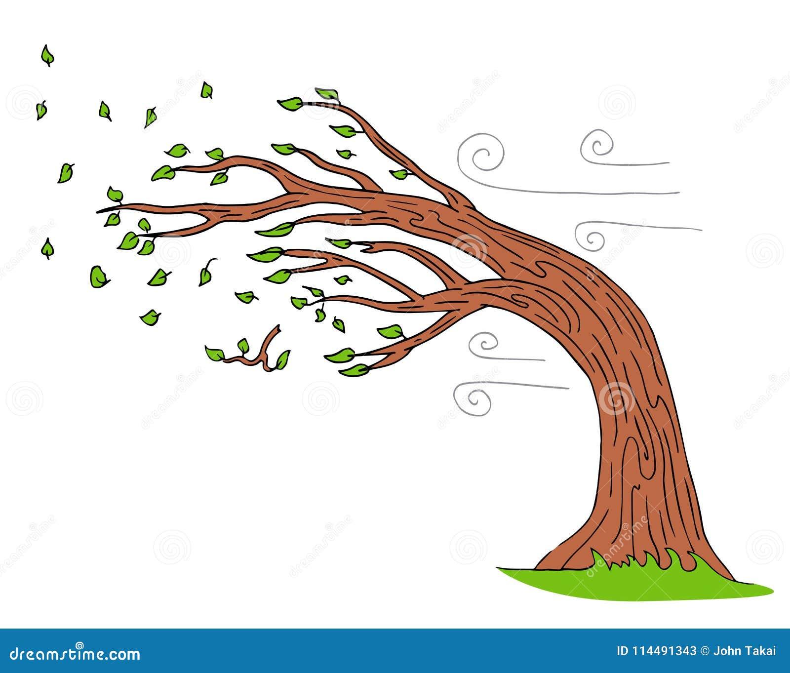 Blowing Wind Windy Day Bending Tree
