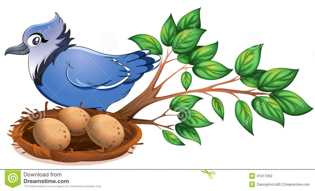 Stock Illustration Blue Bird Branch Tree Nest Illustration White Backg...
