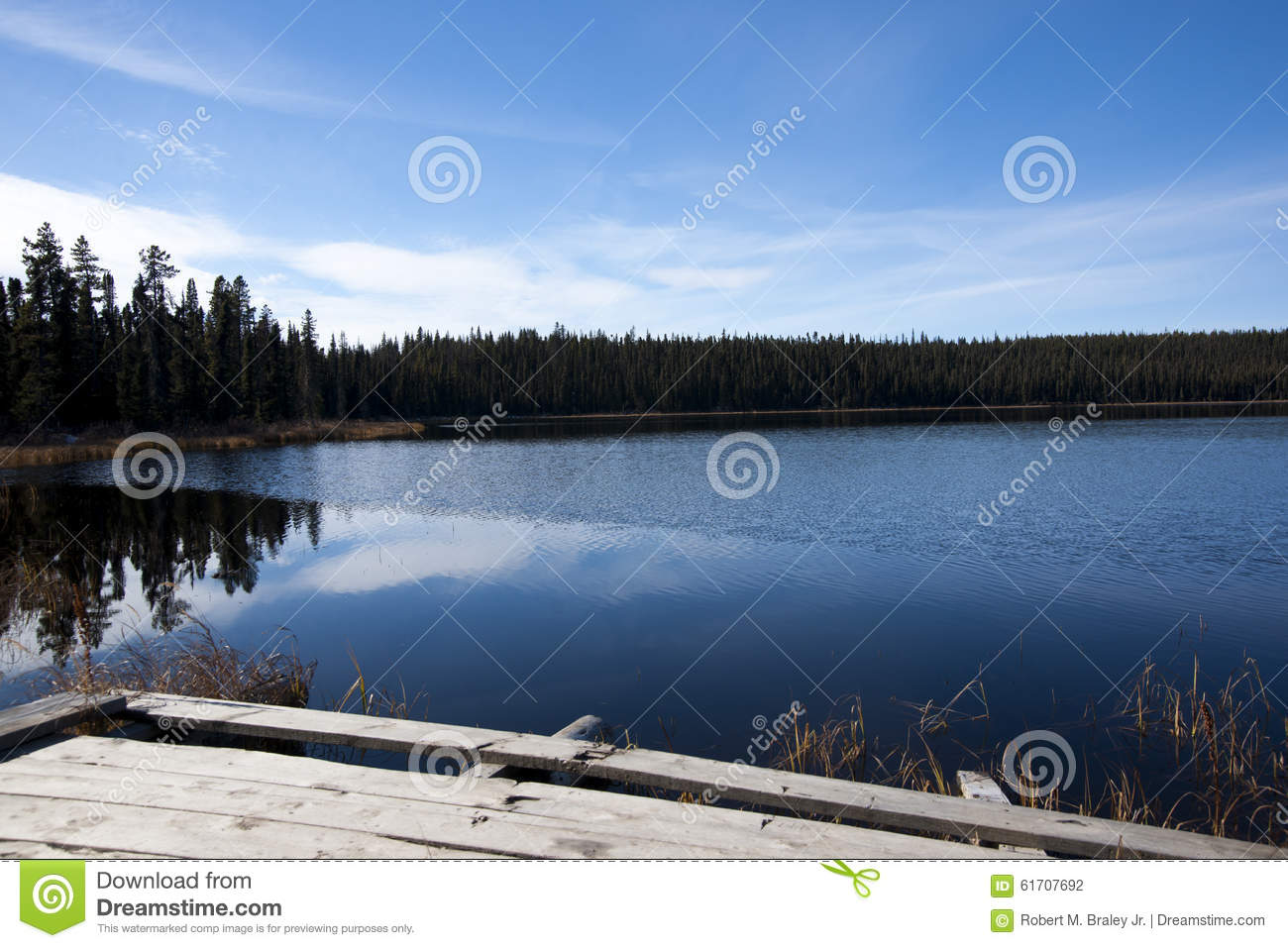 Download Blue Calm Lake stock photo. Image of columbia, forest - 61707692