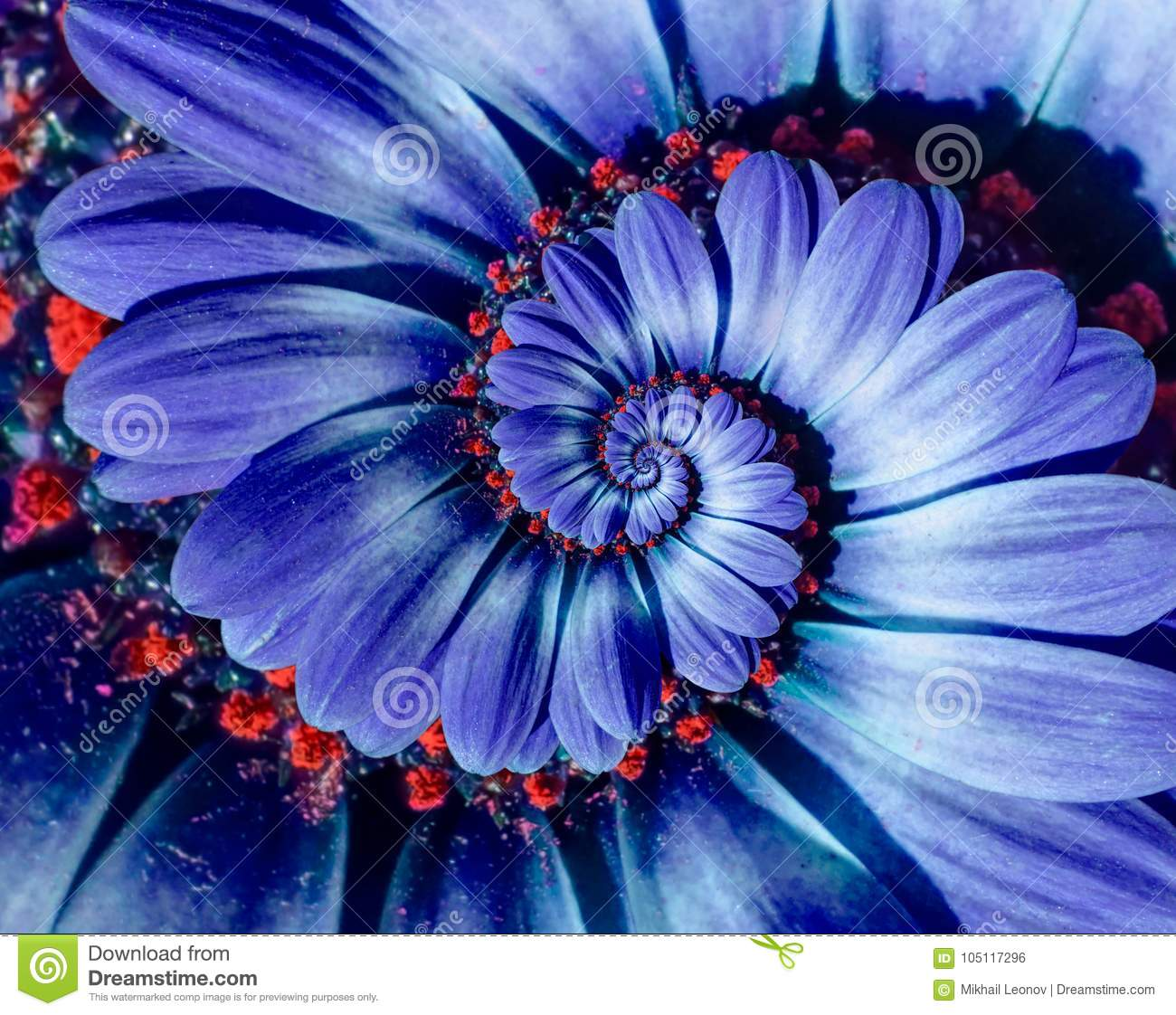 Blue Camomile Daisy Flower Spiral Abstract Fractal Effect