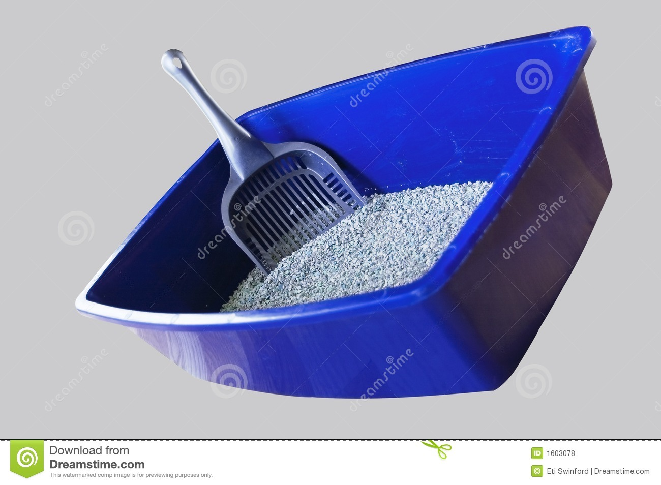 Blue Cat Box Stock Photo Image Of Poop Soiled Trained 1603078