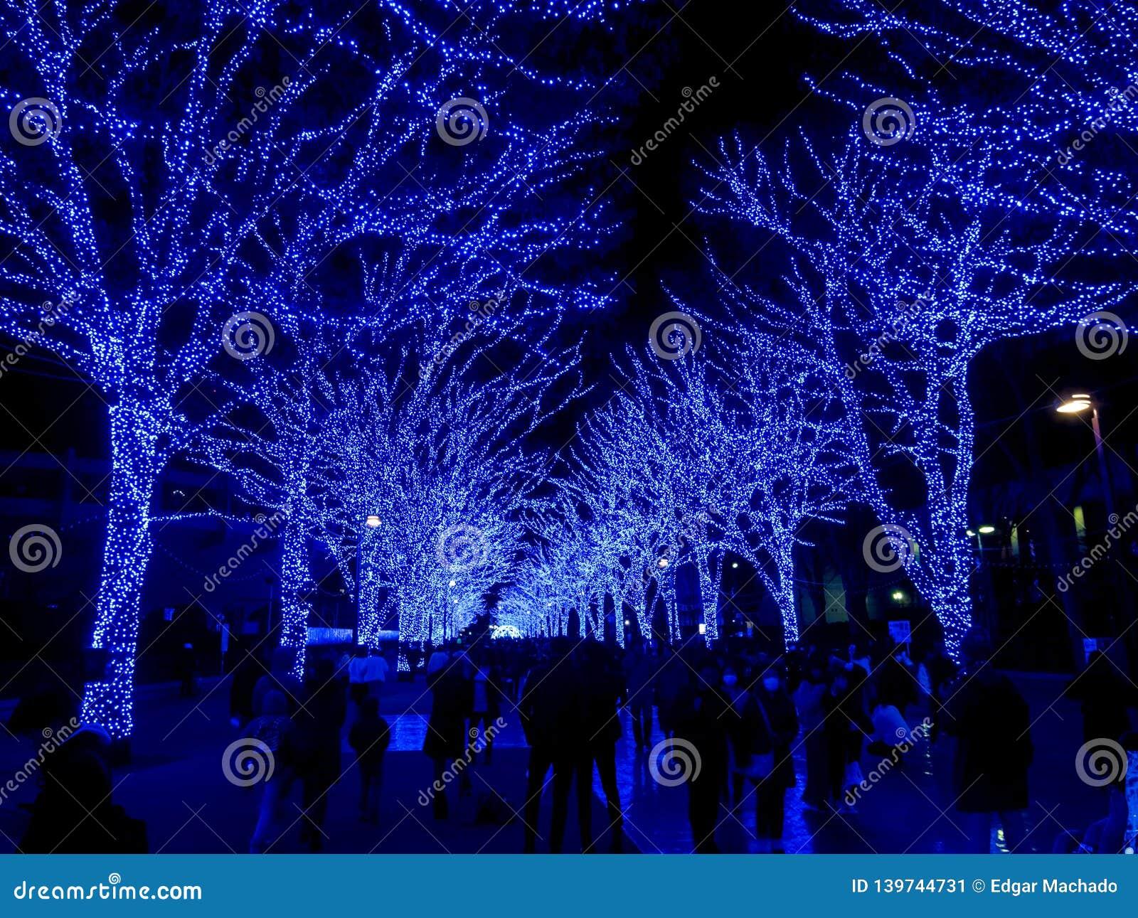 Blue cave, Tokyo