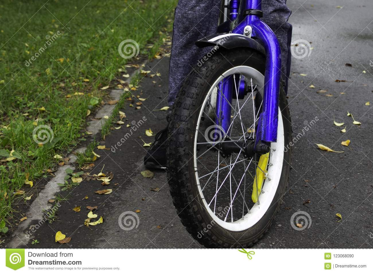 Blue children`s bike on the autumn asphalt path